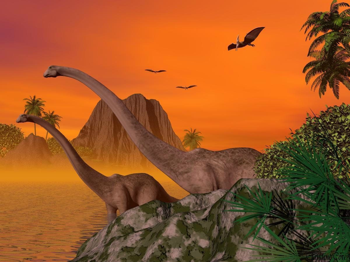 fond d'ecran dr dinosaure 76bd141b